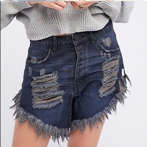 NEW One Teaspoon Frankies cutoff  jean shorts